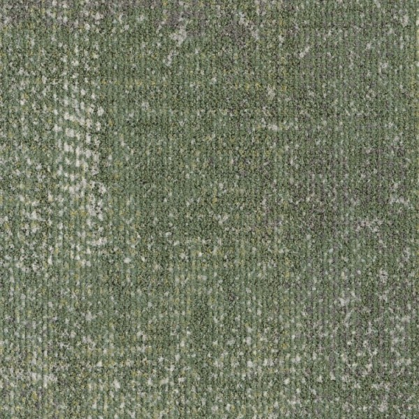 ReForm Transition Fibre green 5500