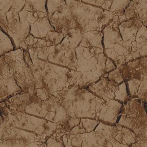mudcrack   brown