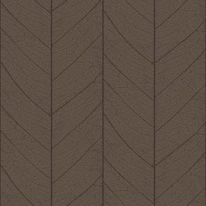 leaf skeleton  brown