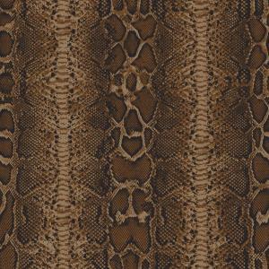 reptile   brown