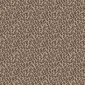 leopard  beige