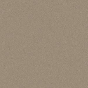 grainy texture  beige