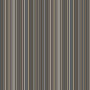 madras stripe  blue