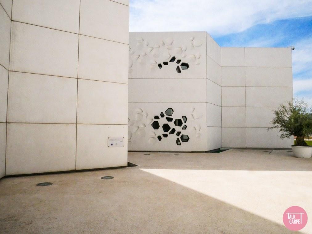 Talk Carpet Centro de arte contemporaneo Cordoba P1020348