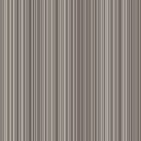 Thin Lines Grey