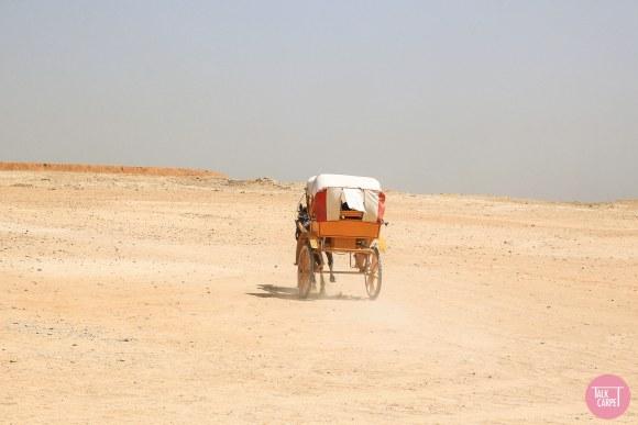 visit egypt pyramids, Visit the Egypt pyramids: the wonders of Giza and Saqqara