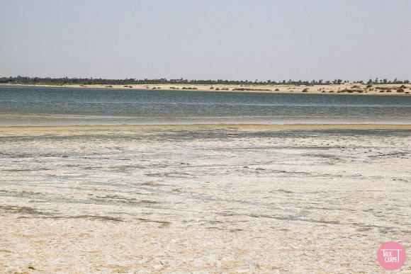 desert safari, The serenity and grandeur of our desert safari leaves a profound impact