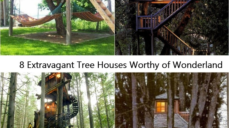 8 Extravagant Tree Houses Worthy of Wonderland