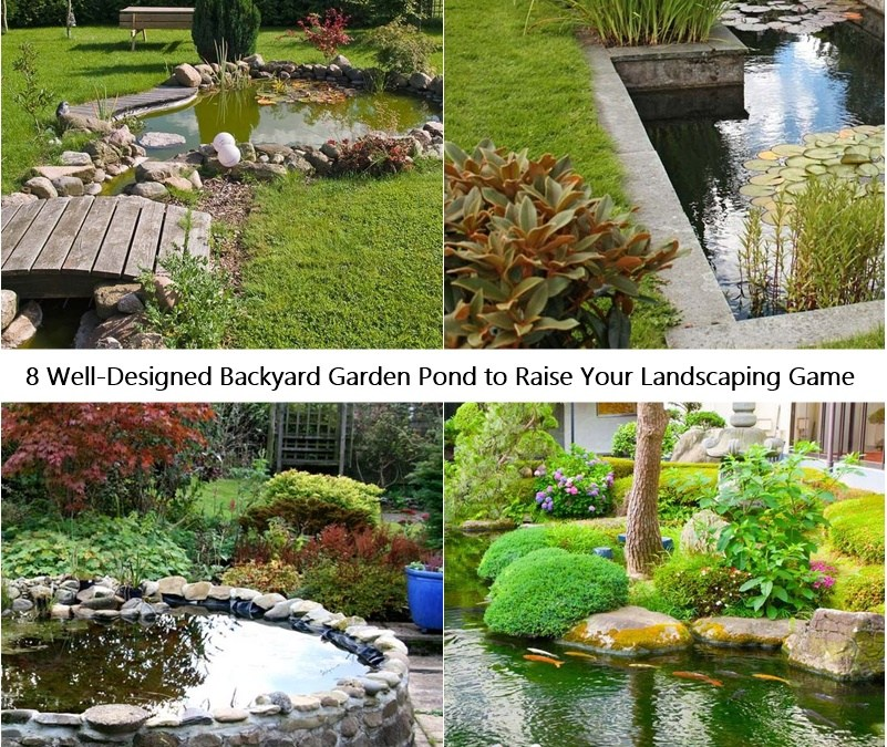8 Well-Designed Backyard Garden Pond to Raise Your Landscaping Game