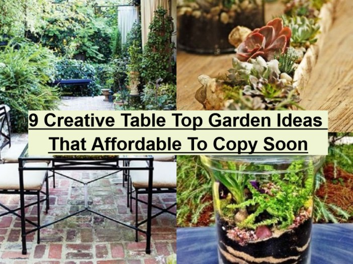 9 Creative Table Top Garden Ideas That Affordable To Copy