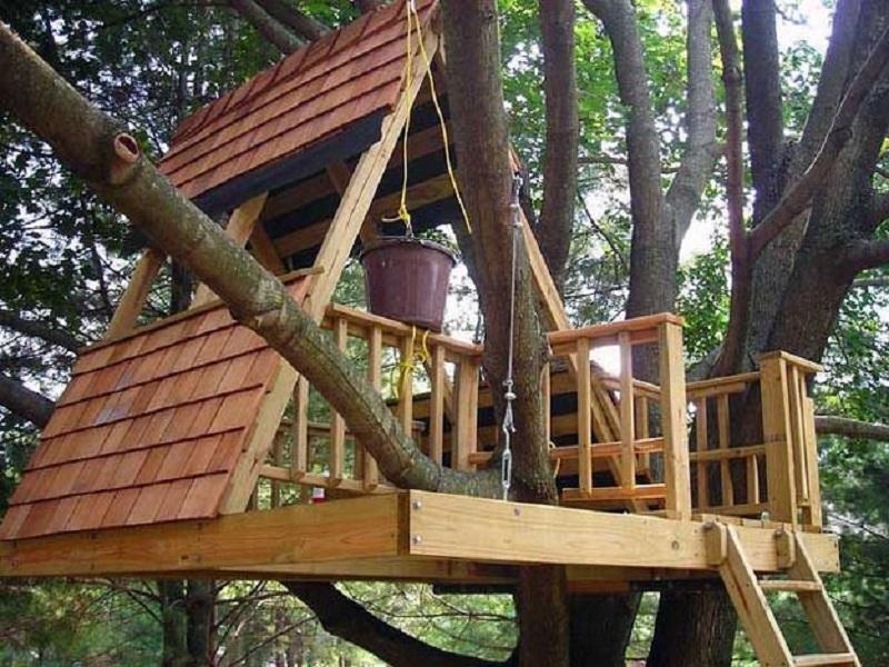 A Frame Treehouse