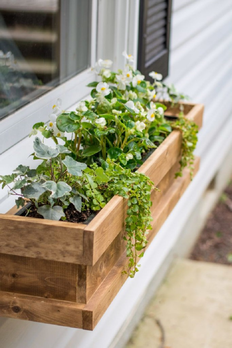 Cedar Window Boxes