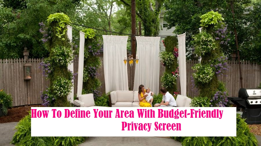 How To Define Your Area With Budget-Friendly Privacy Screen