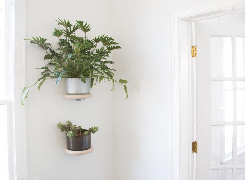 Minimalist Wall Mounted Planter