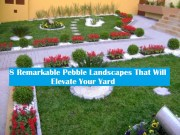 8 Remarkable Pebble Landscapes That Will Elevate Your Yard
