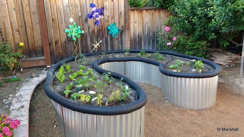 Metal Sheet Raised Garden