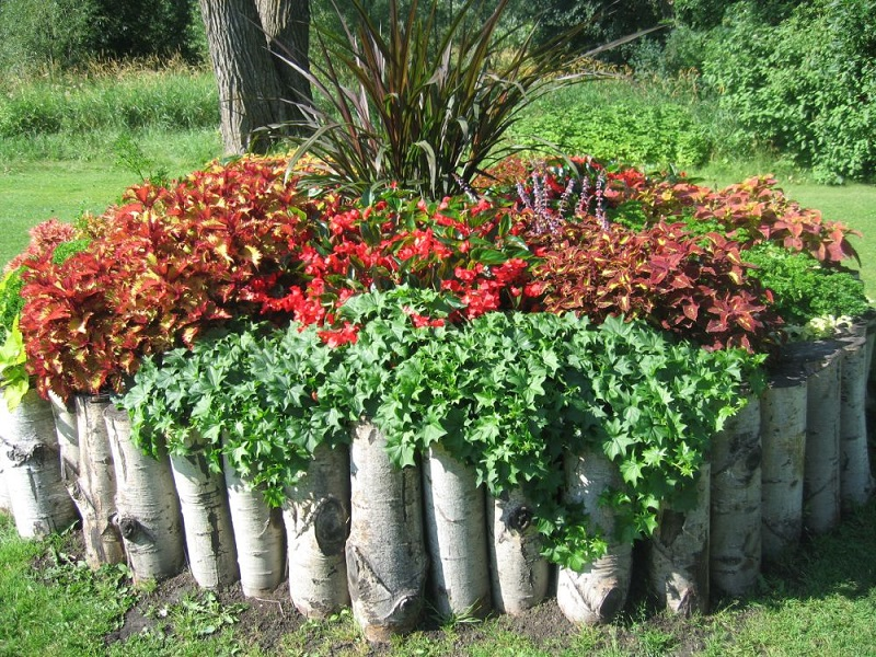 Wood Stumps Used To Create A Flower Bed