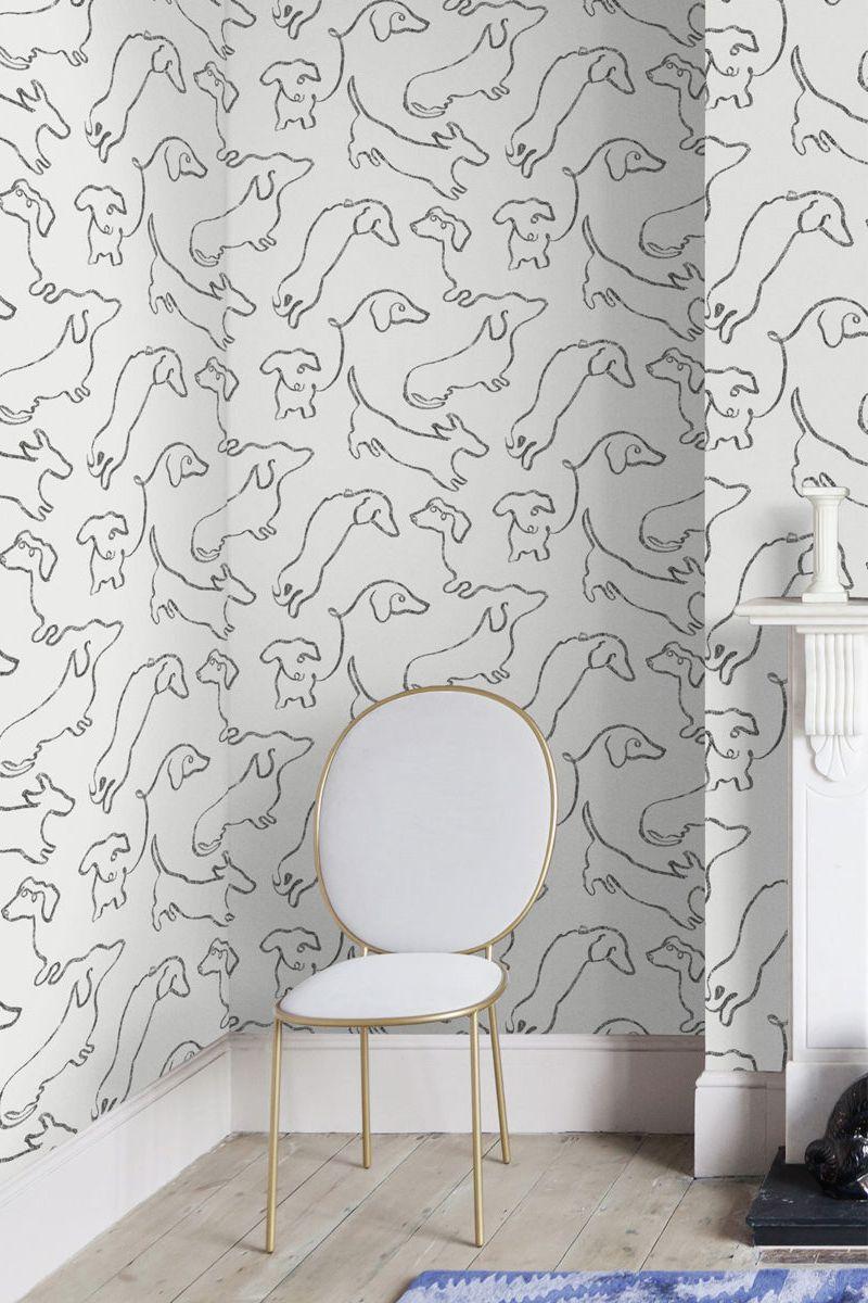 Pet Friendly Wallpaper