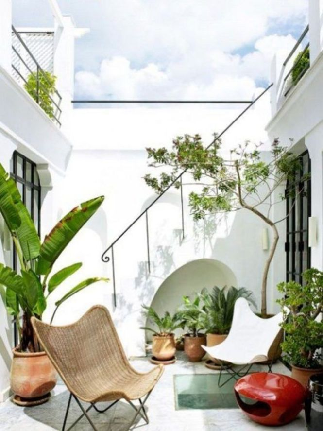 Small Tropical Patio With Lots Of Potted Plants