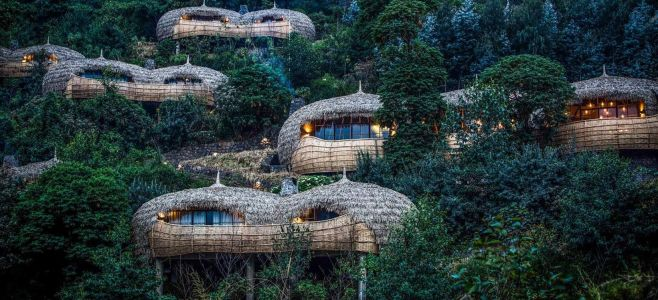 Nature-Inspired Home Designs