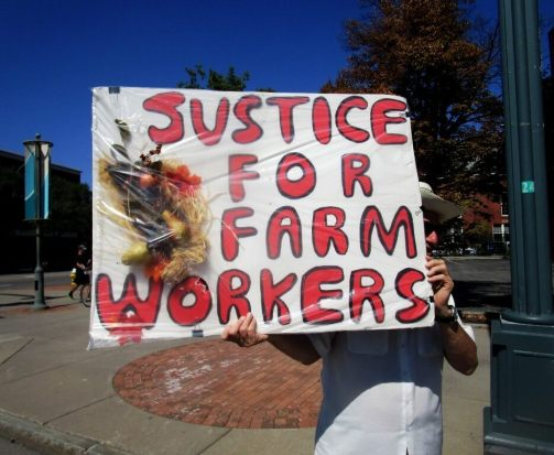 justice for farm workers