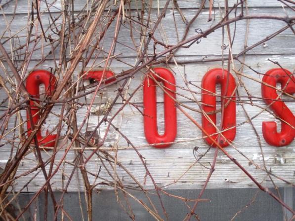 Groos letters
