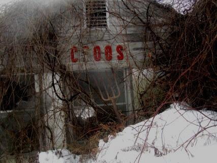 groos-darkened