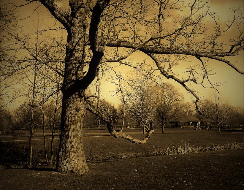 Genesee Valley Park Awakens