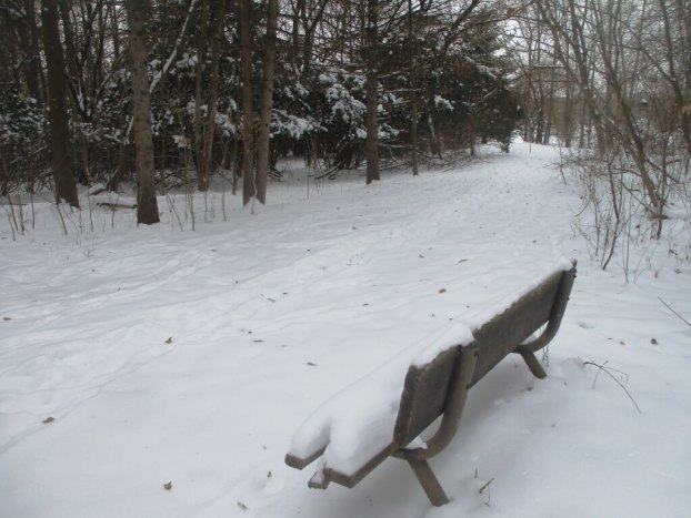 Bench featured