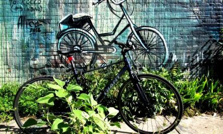 Racing for a Solution: Can Bike Sharing Work in Rochester?