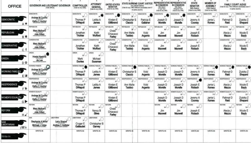 2018 25th Congressional District ballot