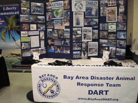 Bay Area DART 2