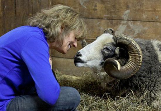 Kathy Stevens, founder & director of Catskill Animal Sanctuary