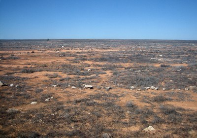 Nullarbor Plain  Source: https://storify.com/angiefran/nullarbor-plain