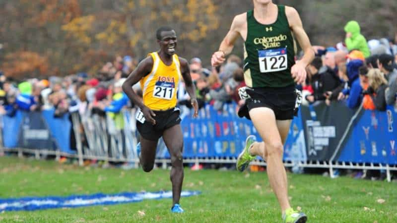 Iona MXC Places Fifth At NCAA Championship; Kirui All-American