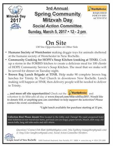 mitvah day 2017 FLYER for Social Action_Page_1.jpg