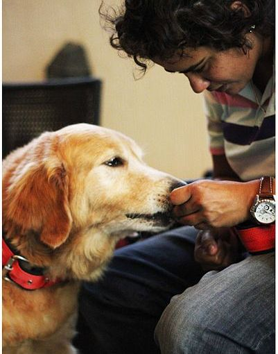 Free Rabies Clinic Sunday, April 23 in New Rochelle
