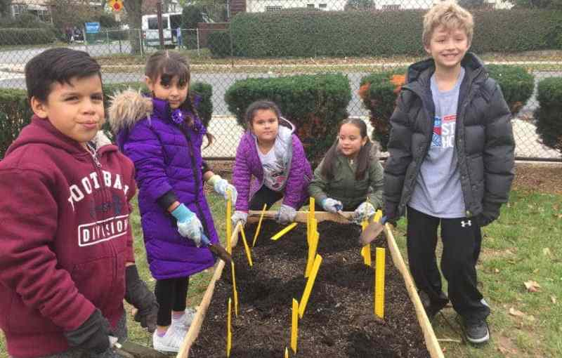Columbus Elementary School second-graders plant daffodil bulbs in the new garden.