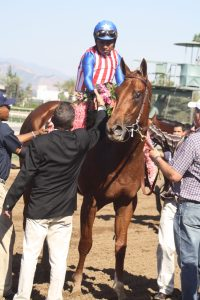 Dortmund, jockey Martin Garcia after the Santa Anita Derby. Photo by Terri Keith.