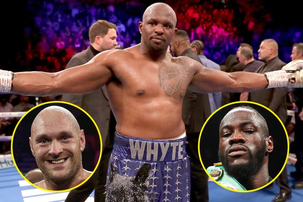 Dillian Whyte was not shy with his opinions on the current heavyweight division