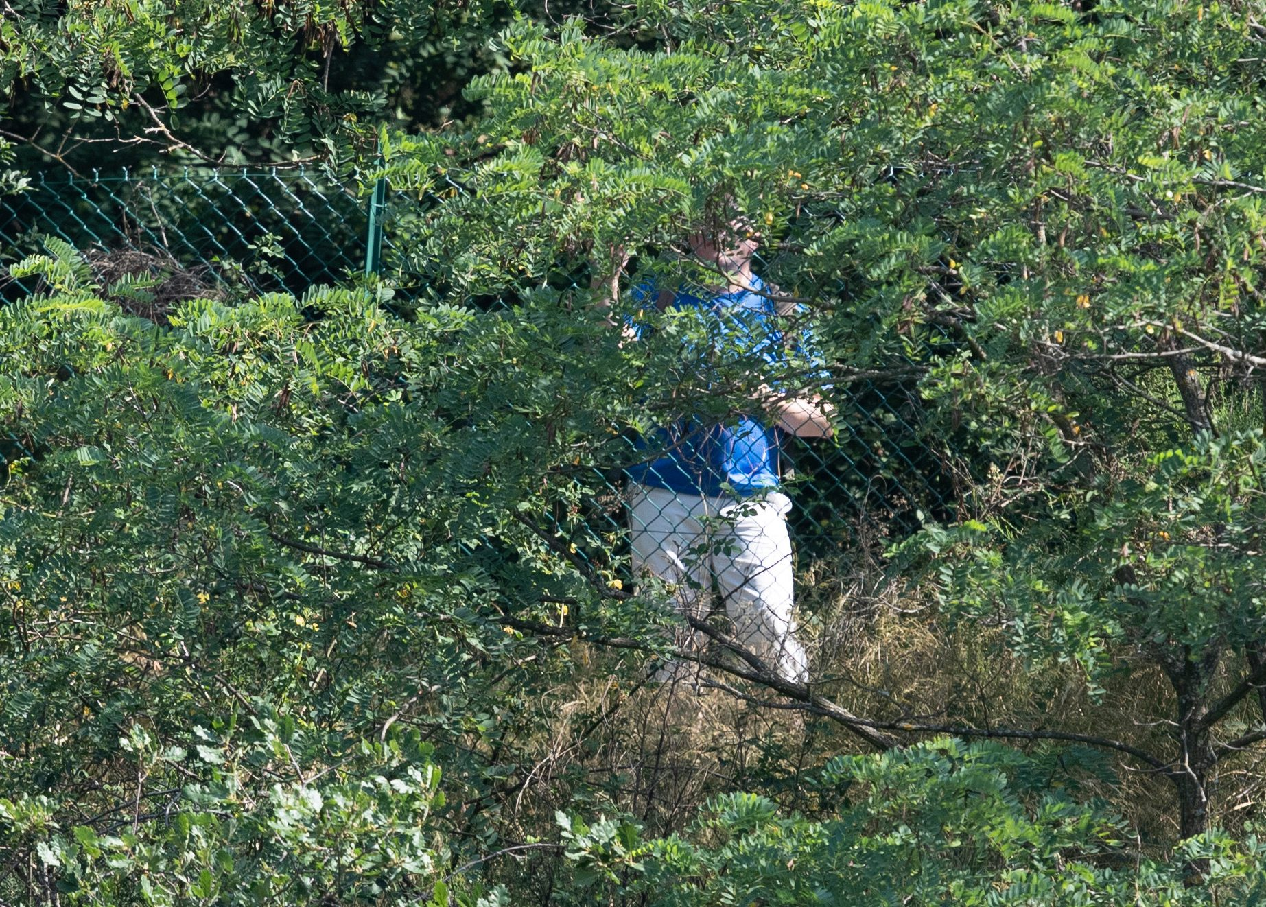 A man can be seen watching the Lionesses train through the bushes