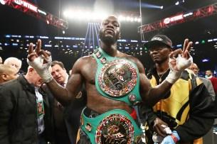 Wilder (41-0-1, 40 KOs) is the WBC heavyweight champion