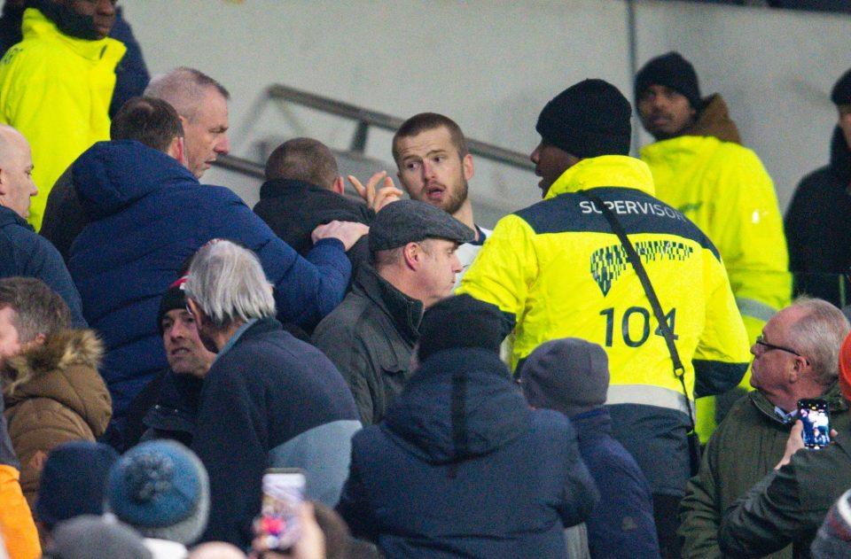 Dier was seen fighting in the stands after the defeat against Norwich