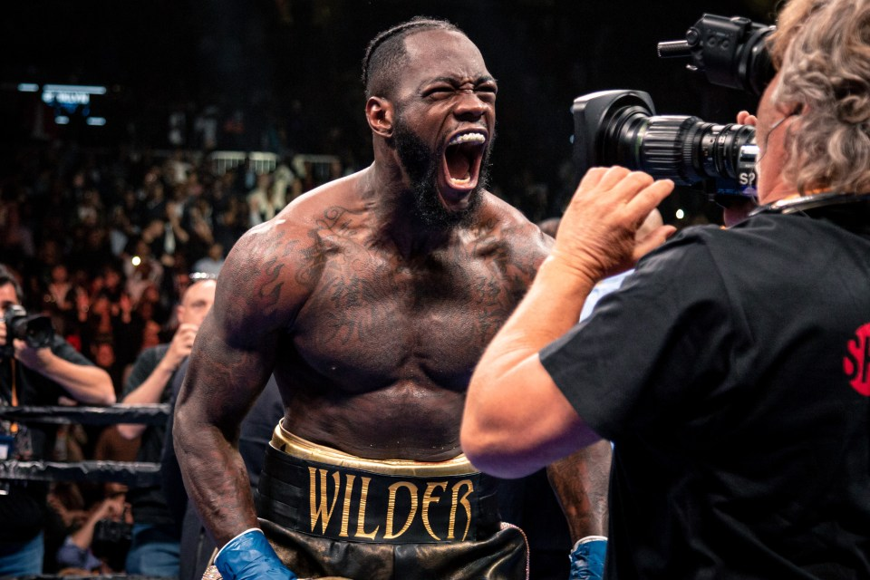 Wilder made a series of apologies after the fight