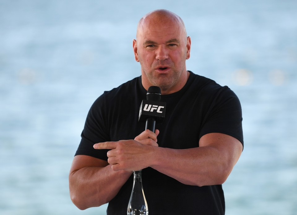 The UFC boss loves boxing, but has always lamented the way the sport has been run