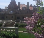Sweet lilacs with the Lougheed House in the background
