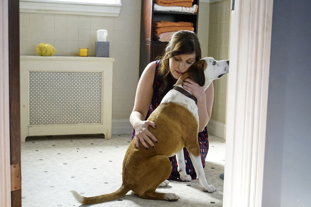 'Downward Dog' cancelled by ABC, but the dog days aren't over yet