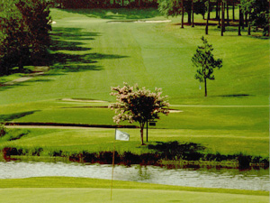 New City Manager Proud of Hilaman's Impact on Tallahassee Golf Prices