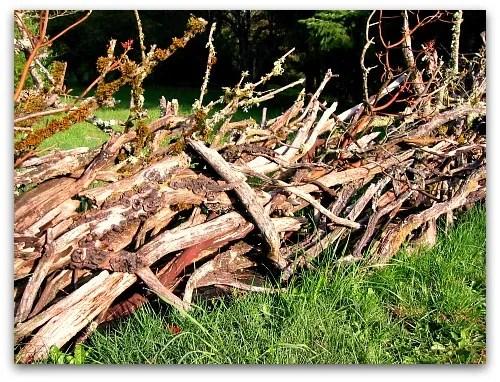 madrona stick fence closeup