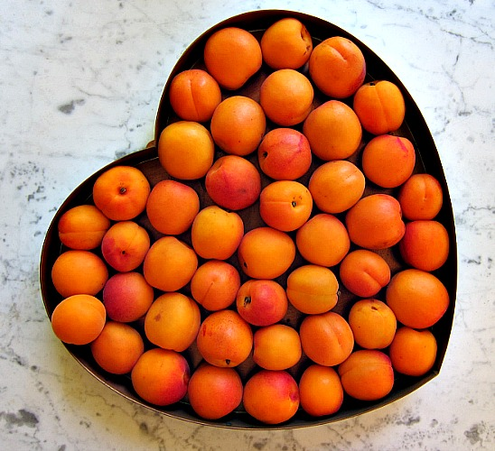 recipe for fresh apricots made into jam